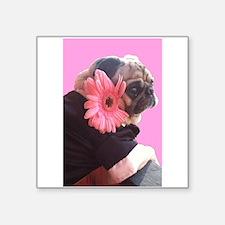 Valentine Pug Sticker