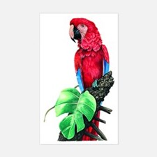 Unique Toucan birds Decal