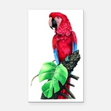 Cute Parrot head Rectangle Car Magnet
