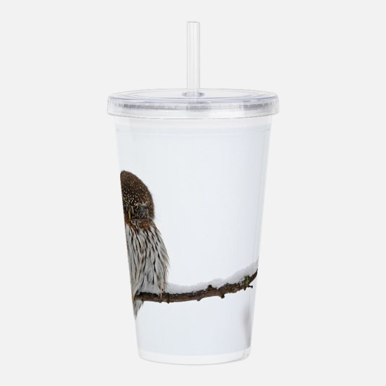 Northern Pygmy Owl- The Look Acrylic Double-wall T