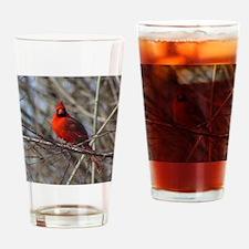 Male Cardinal Drinking Glass