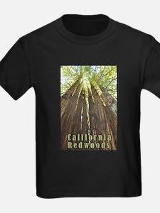 Unique Redwoods california T