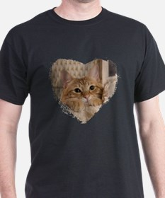 Cute Ginger kitten T-Shirt