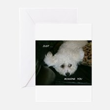 Cool Bichon frise Greeting Cards (Pk of 10)