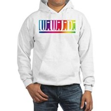 Rainbow WWJD Hoodie