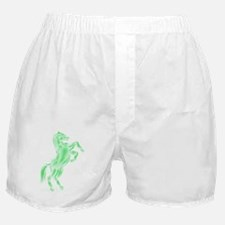 Spirit Horse Boxer Shorts