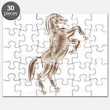 Spirit Horse Puzzle