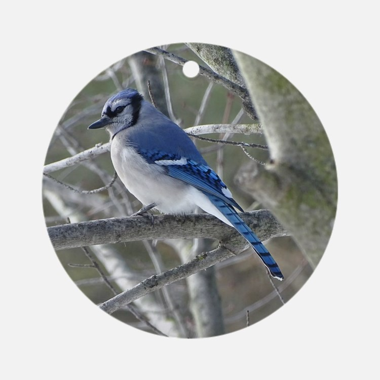 Blue Jay Round Ornament