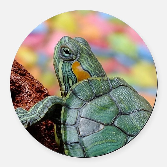 Cute Amphibians and reptiles Round Car Magnet