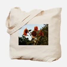 Unique Hanging pictures of Tote Bag