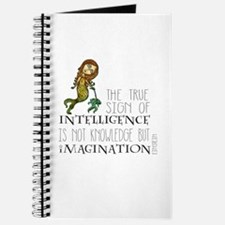 The True Sign of Intelligence is Imagination Journ