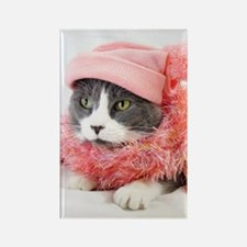 Cute Pink cat Rectangle Magnet