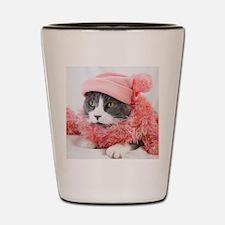 Funny Kitties Shot Glass