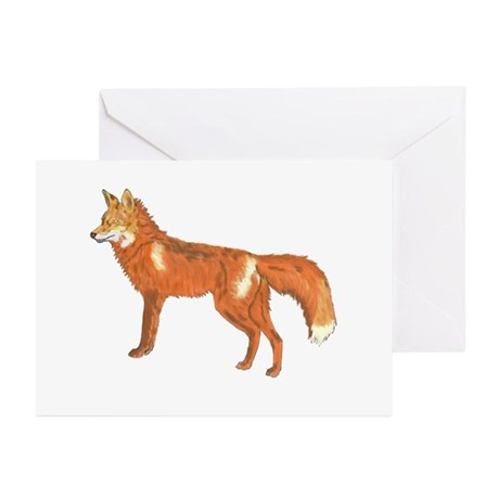 Red Fox Greeting Cards (Pk of 10)