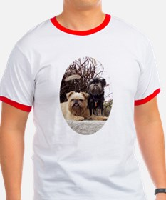 Rough Brussels Griffons Special T