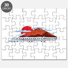 Bullett Train Puzzle