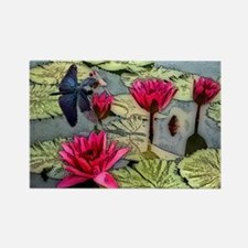 Dragonfly Pond Magnets