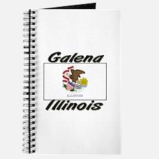 Galena Illinois Journal