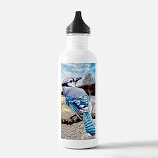 Blue Jay Sunrise Water Bottle