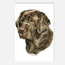 Labrador Retriever Dog Portrait Postcards (8)