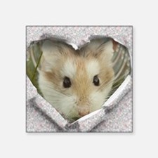 Peep Hole Hamster Sticker