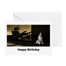 Waiting In The Shadows Birthday Card