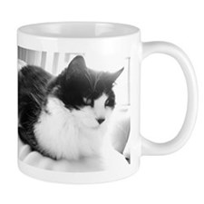 Black and White Long-haired Cat Mugs