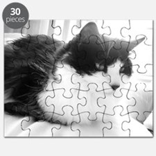 Black and White Long-haired Cat Puzzle