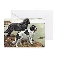 Newfoundland Dog Art Greeting Cards (Pk of 20)