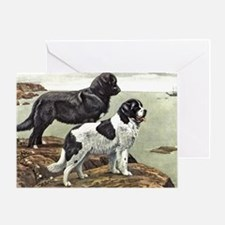 Newfoundland Dog Art Greeting Card