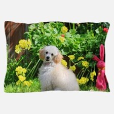 Spring Toy Poodle Pillow Case