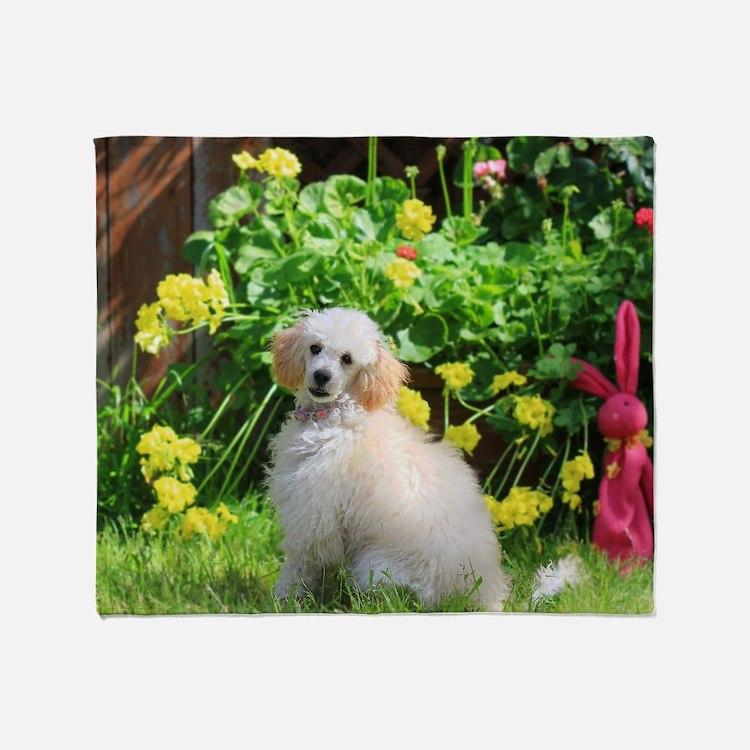 Spring Toy Poodle Throw Blanket