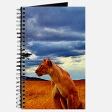 Lioness Storm Journal
