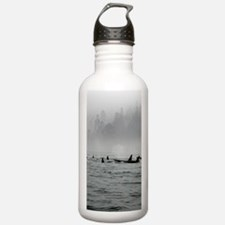 Passing Whales Water Bottle