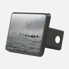 Passing Whales Hitch Cover