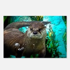 Funny Otter Postcards (Package of 8)