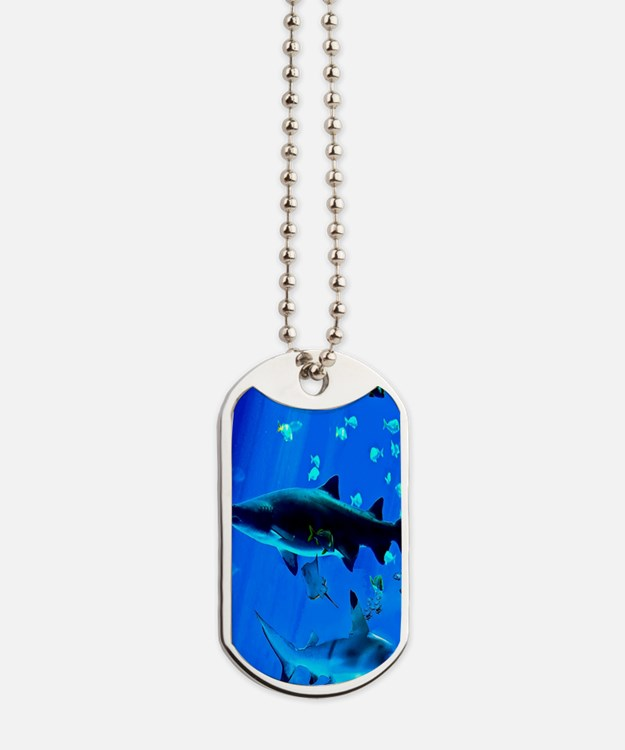 2 Black Tipped Sharks Dog Tags