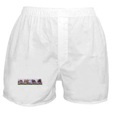 Bulldog Puppy Flower Row Boxer Shorts