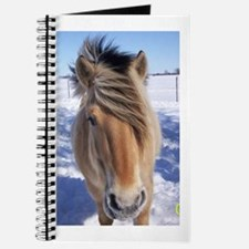 Friend's forever Journal