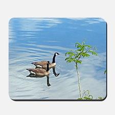 Swimming Geese Mousepad