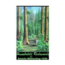 Humboldt Redwoods Rectangle Decal