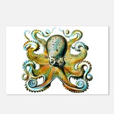 octopus pillow Postcards (Package of 8)