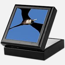 Cute Frigate Keepsake Box