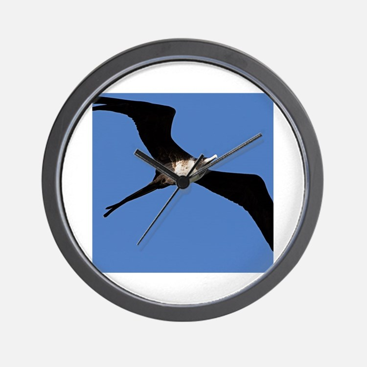 Cute Frigate bird Wall Clock