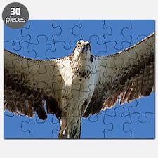 Cute Animals wildlife Puzzle