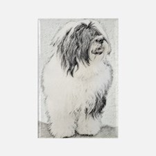 Bearded Collie Rectangle Magnet