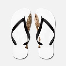 Golden Cocker Spaniel Flip Flops