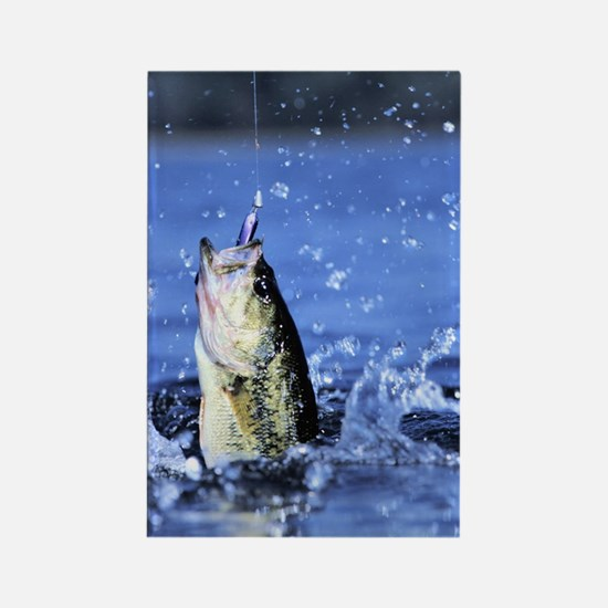 Cute Bass fishing Rectangle Magnet