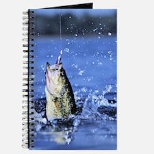 Funny Bass Journal