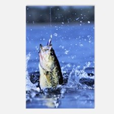 Cute Bass fishing Postcards (Package of 8)